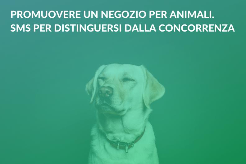 Promuovere un negozio per animali. SMS per distinguersi dalla concorrenza